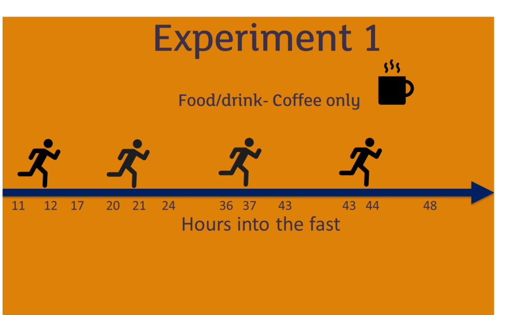 Egg-fast-experiment