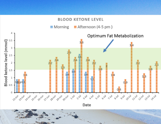 blood ketone tracking